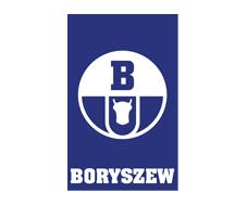 boryszew_logotyp